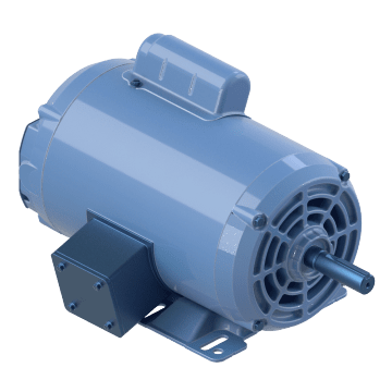 Power Tool Motor