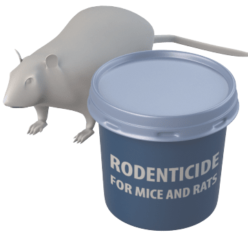 For Mice & Rats