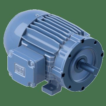 IEEE 841 Motors