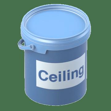 Ceiling Paints