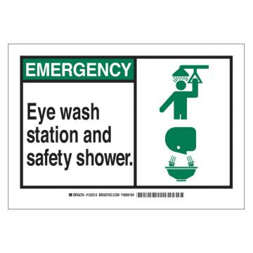 Emergency Eye Wash Station and Safety Shower